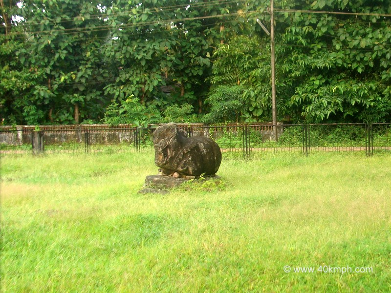 Nandi at Temple site, Cotta Chandor, Goa