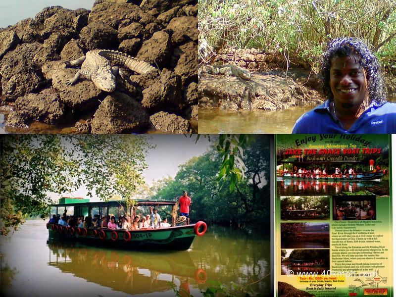 Jake The Snake Boat Trips, Cross Farm, St Estevam Village, Goa