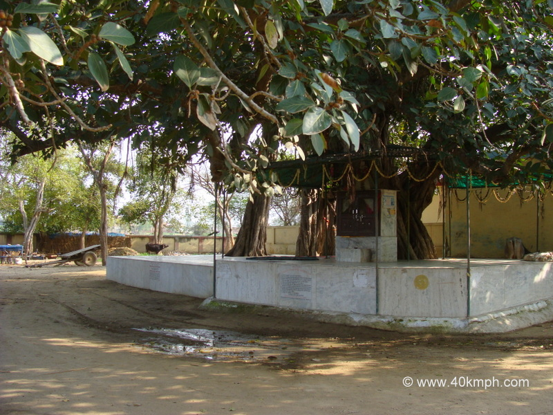 Bhandirvat, Bhandirvan, Uttar Pradesh