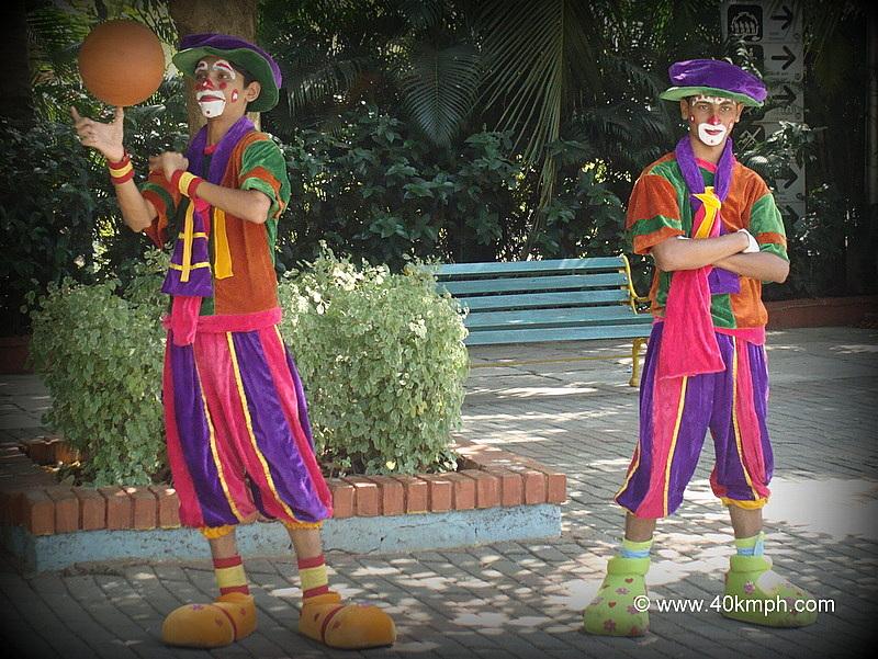 Professional Jugglers