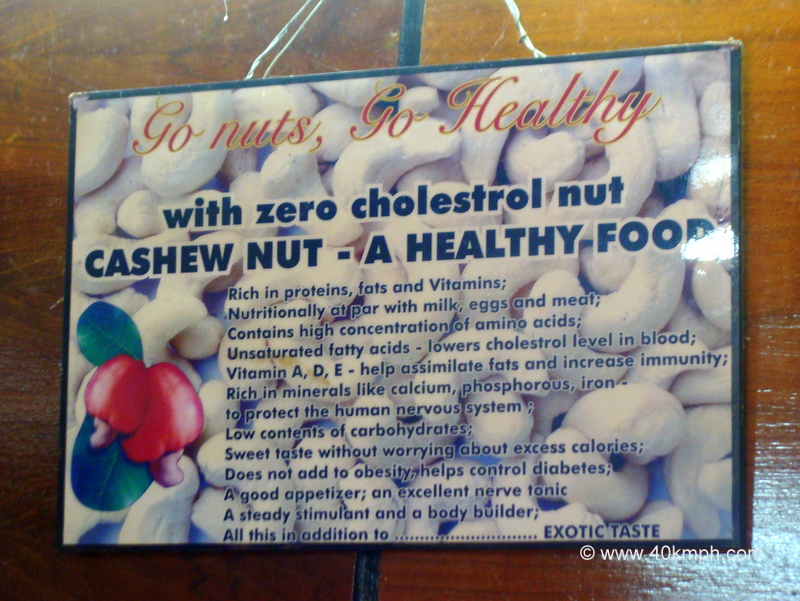Cashew Nut Nutrition Information and Health Benefits