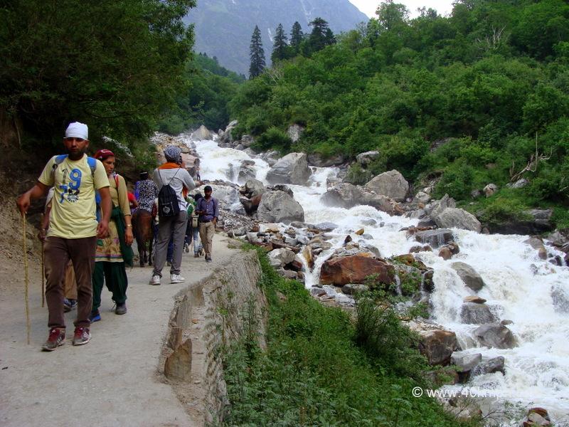 Trek Path to Ghangaria from Govindghat, Uttarakhand