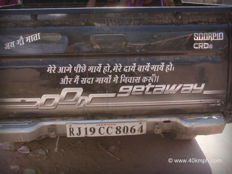 Quote Behind Pick-up Truck About Loving Cows