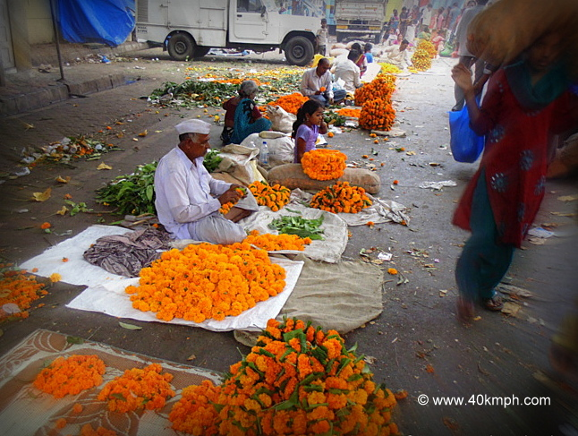 Marigold Flowers for Sale nearby Dadar Wholesale Flower Market, Mumbai, Maharashtra