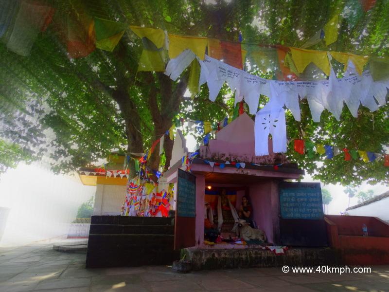 Sujata Mandir, Bakraur Village nearby Bodhgaya, Bihar