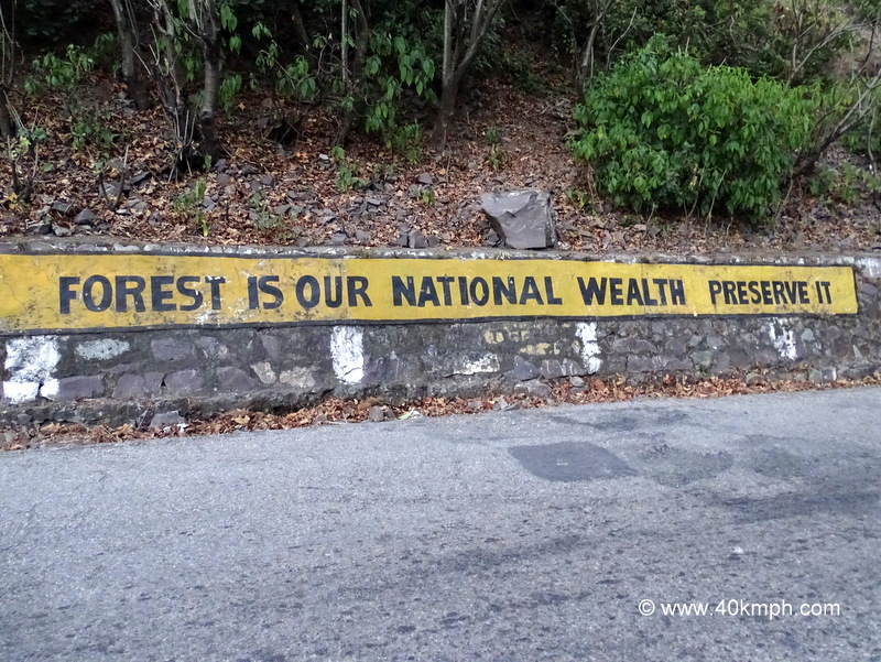 Quote on Save Forest