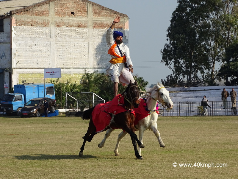 A Nihang Riding Two Horses Together at Kila Raipur Sports Festival 2015 in Punjab