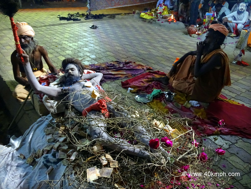Naga Baba Lying on Thorny Branches at Bhavnath Fair 2015 in Junagadh, Gujarat