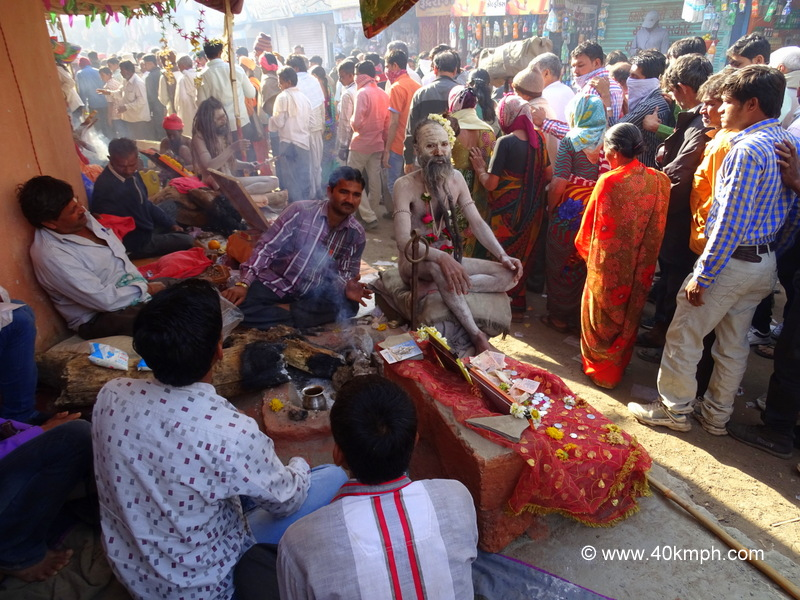 Naga Baba and Devotees at Bhavnath Fair 2015 in Junagadh, Gujarat