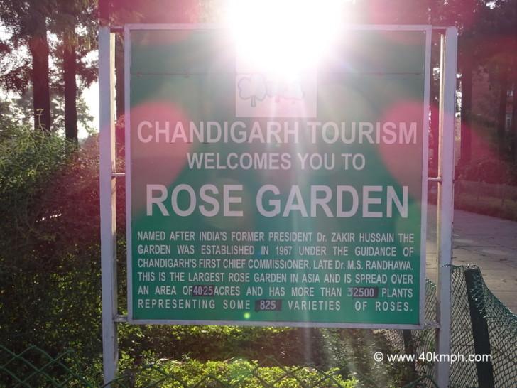 About Chandigarh Rose Garden