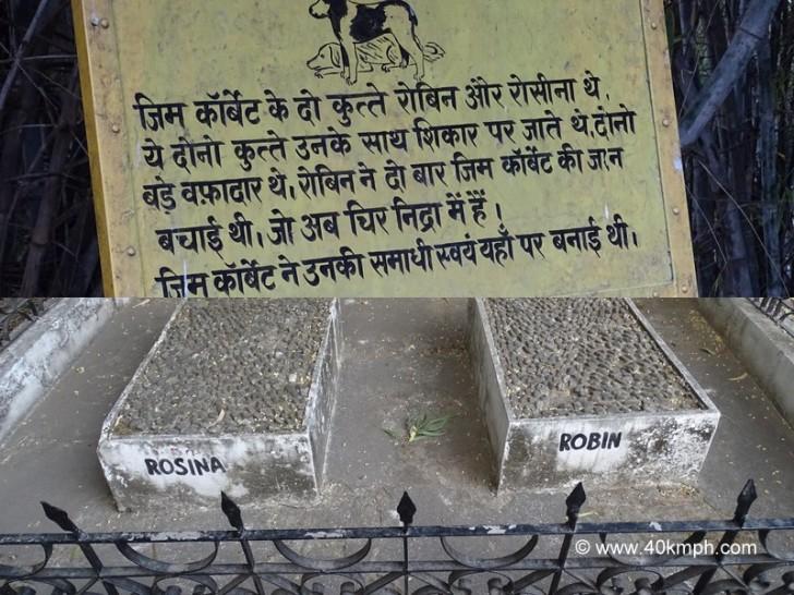 Grave of Jim Corbett's Dogs in Kaladhungi, Uttarakhand