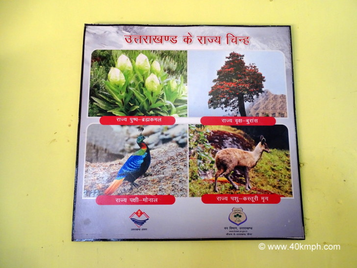 State Symbols of Uttarakhand