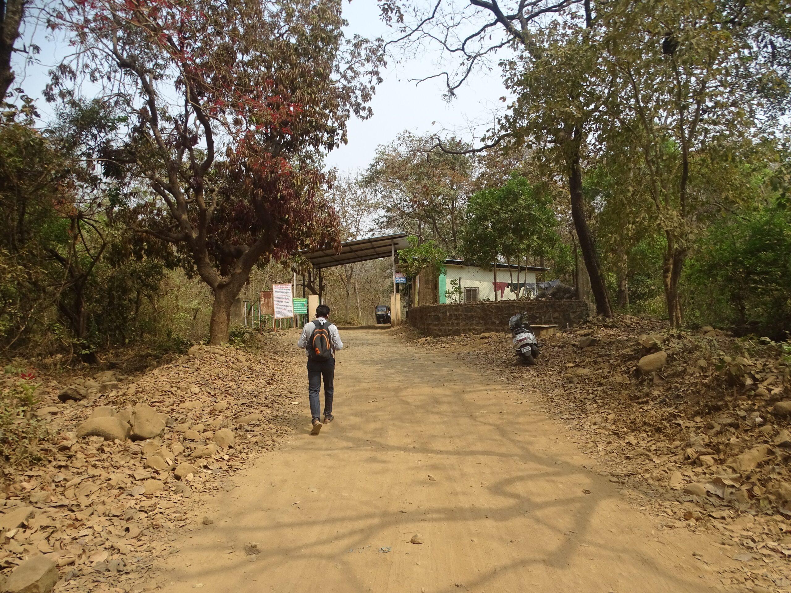 Tungareshwar Forest Gate, Vasai East, Palghar, Maharashtra, India